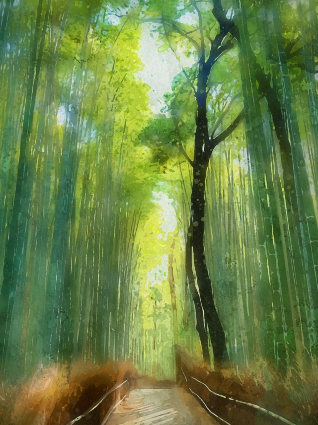 Full Hand Painted Watercolor Fresh Bamboo Forest Trail Background 640x856