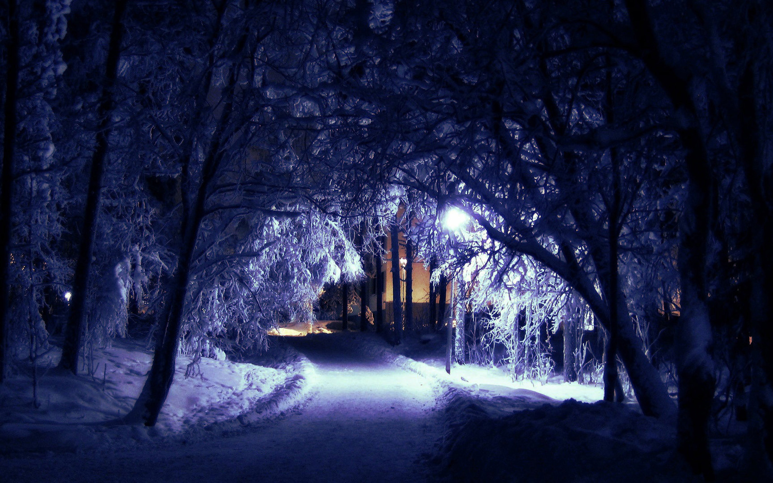 Gallery For gt Winter Night Wallpapers Hd 2560x1600