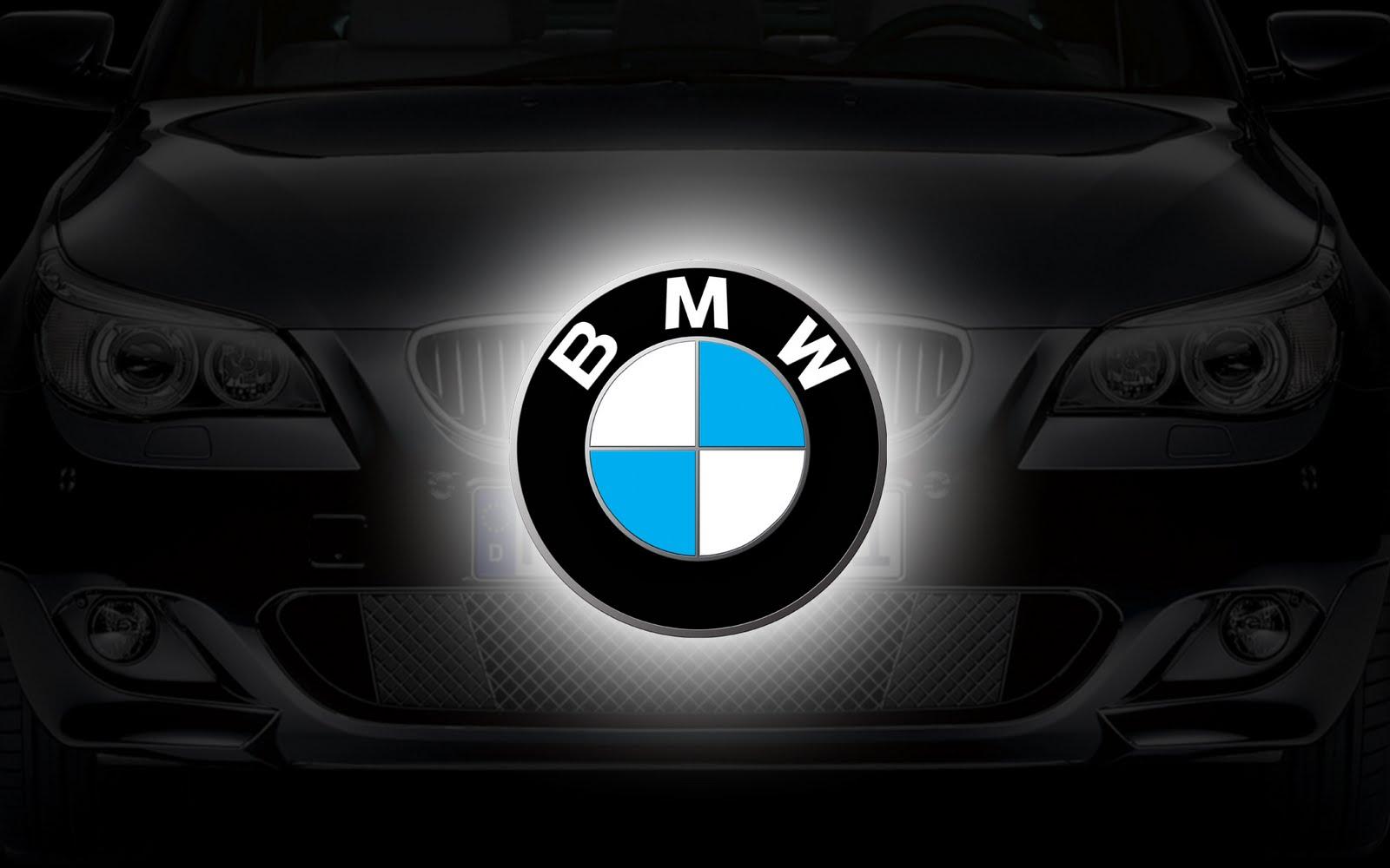 Hot cars BMW logo bmw 2011 logo bmw logo png jpg 1600x1000
