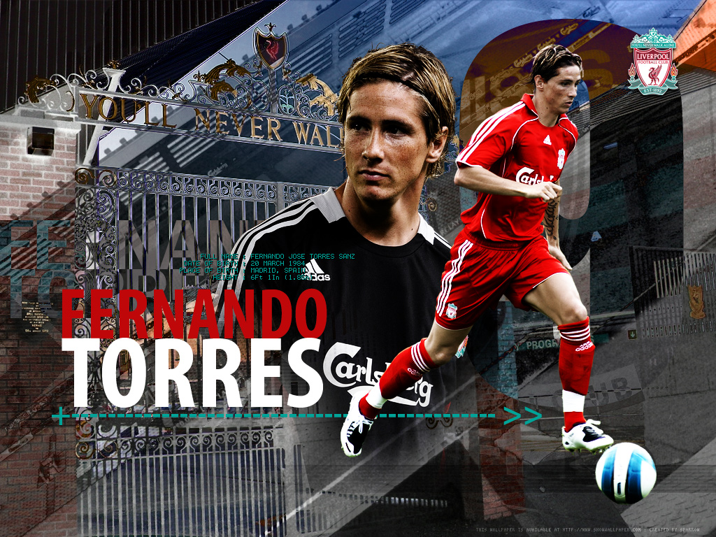 ALL FOOTBALL STARS Fernando Torres Wallpapers 1024x768