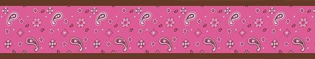 Cowgirl Western Wallpaper Border for Girls Bandana Pink Brown Paisley 613x115