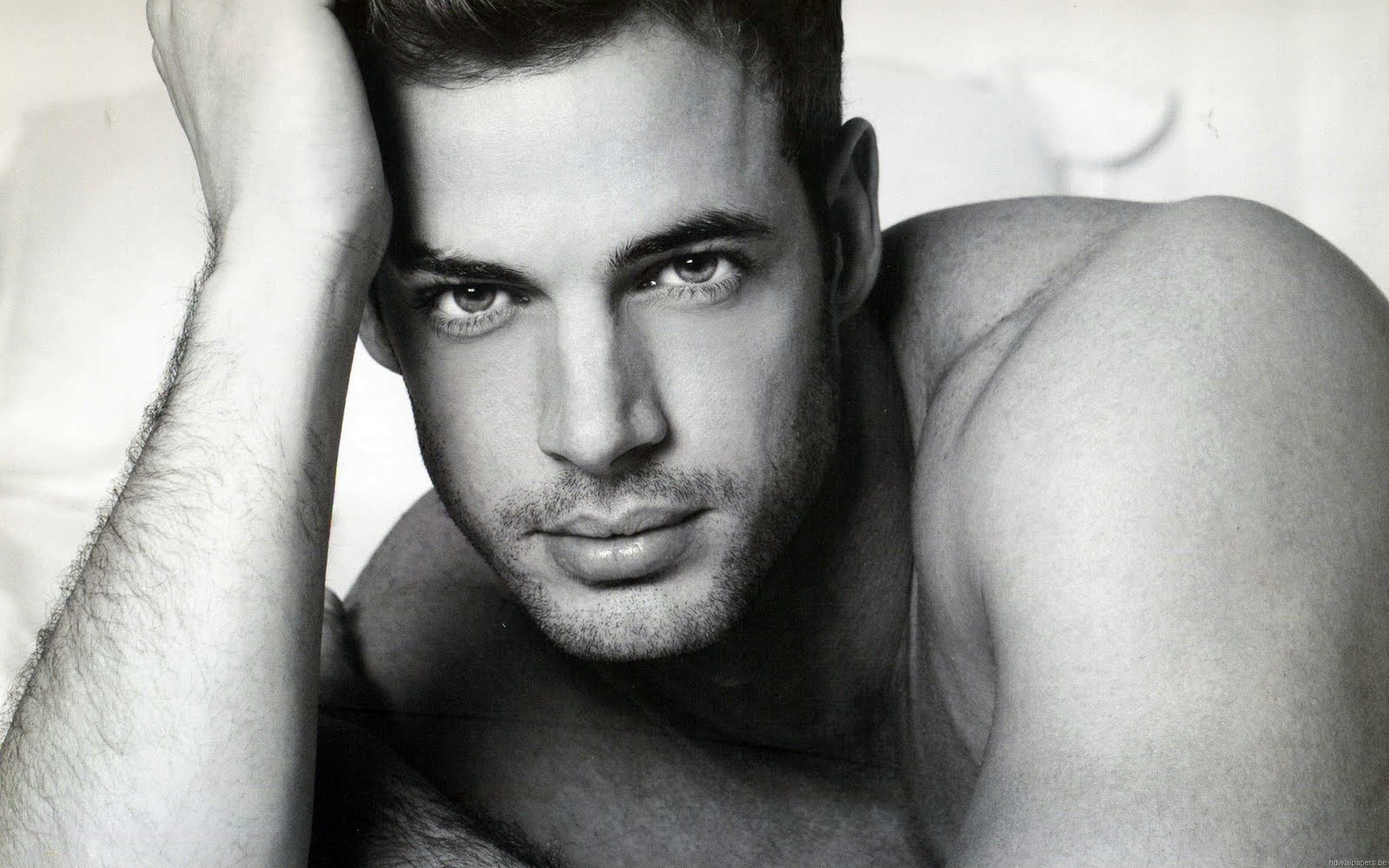 William Levy Wallpapers 2560x1600