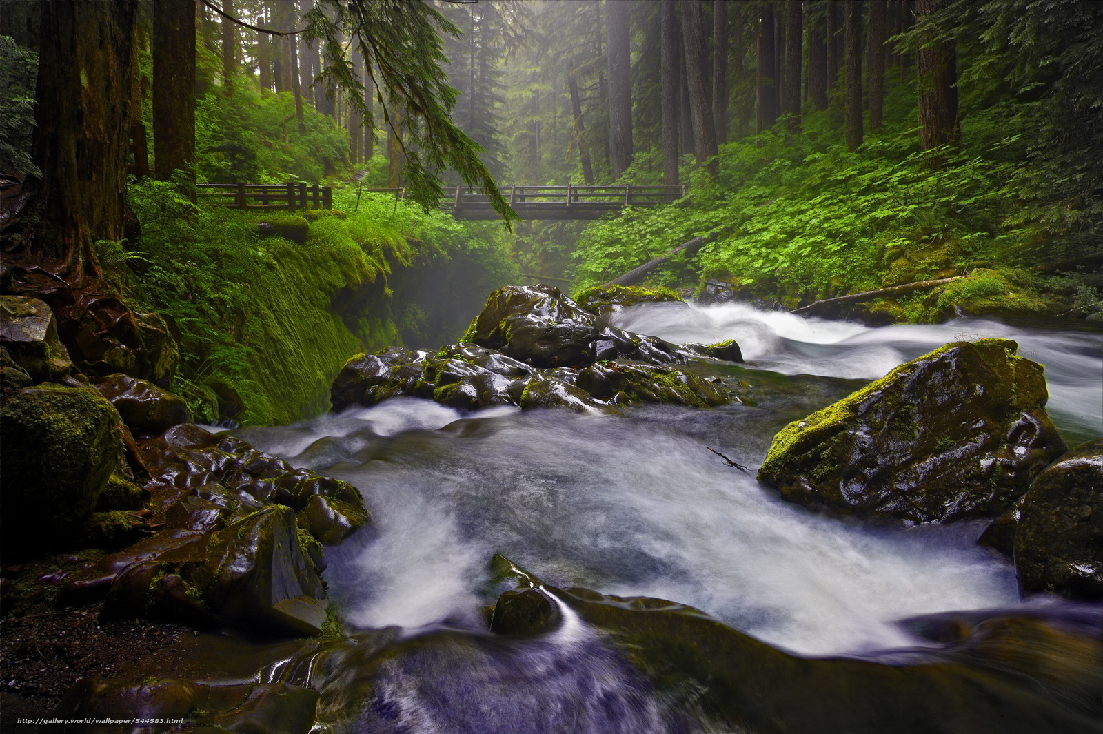 wallpaper Sol Duc Falls Olympic National Park Washington State 1600x1065