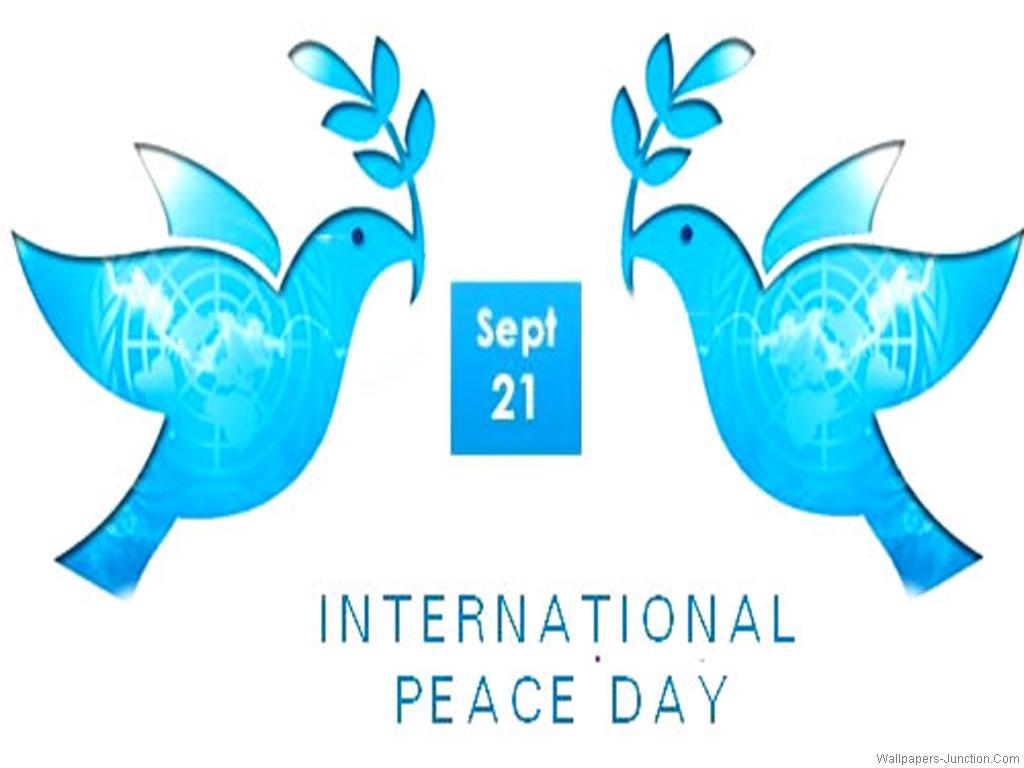 International Day of Peace Wallpaper 2   1024 X 768 stmednet 1024x768