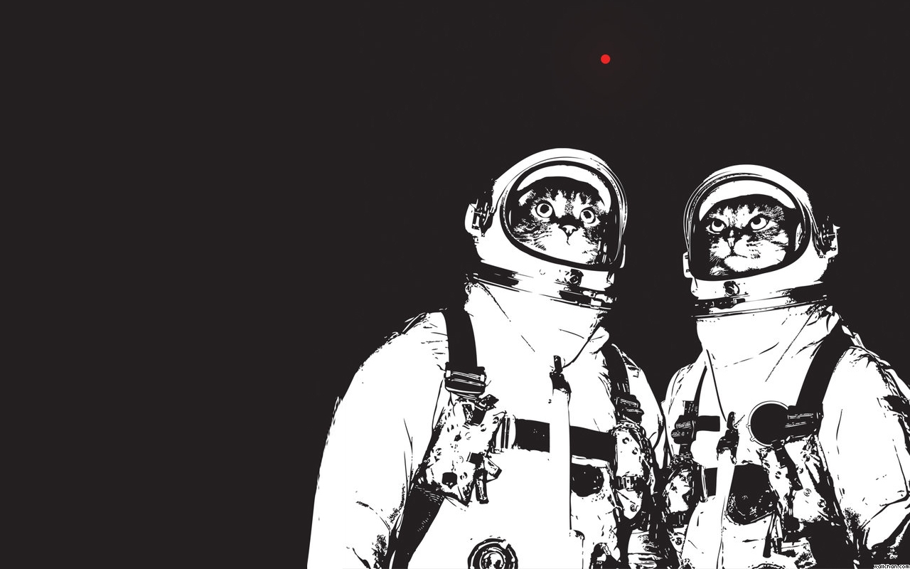justpictcom Cat Astronaut Wallpaper 1280x800
