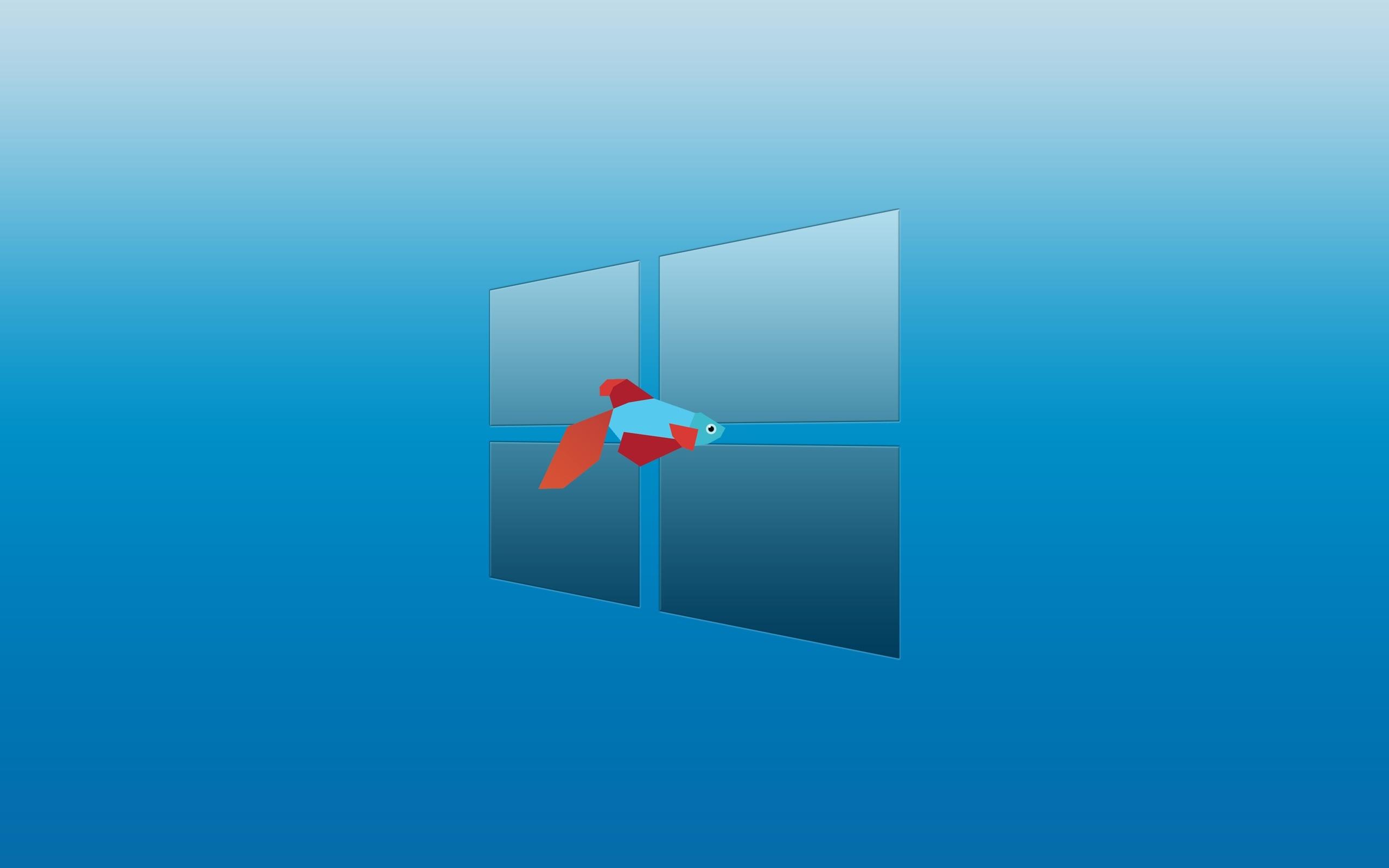 Windows 8 Desktop Background 7015780 2560x1600