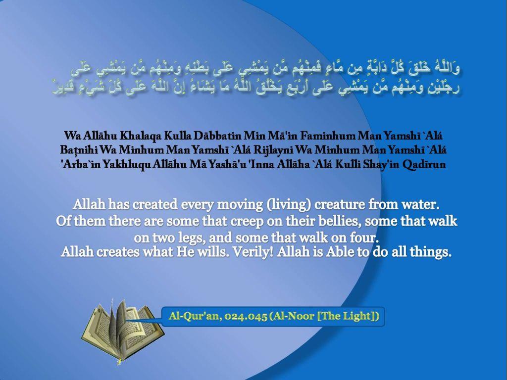 47 Al Quran Wallpaper On Wallpapersafari