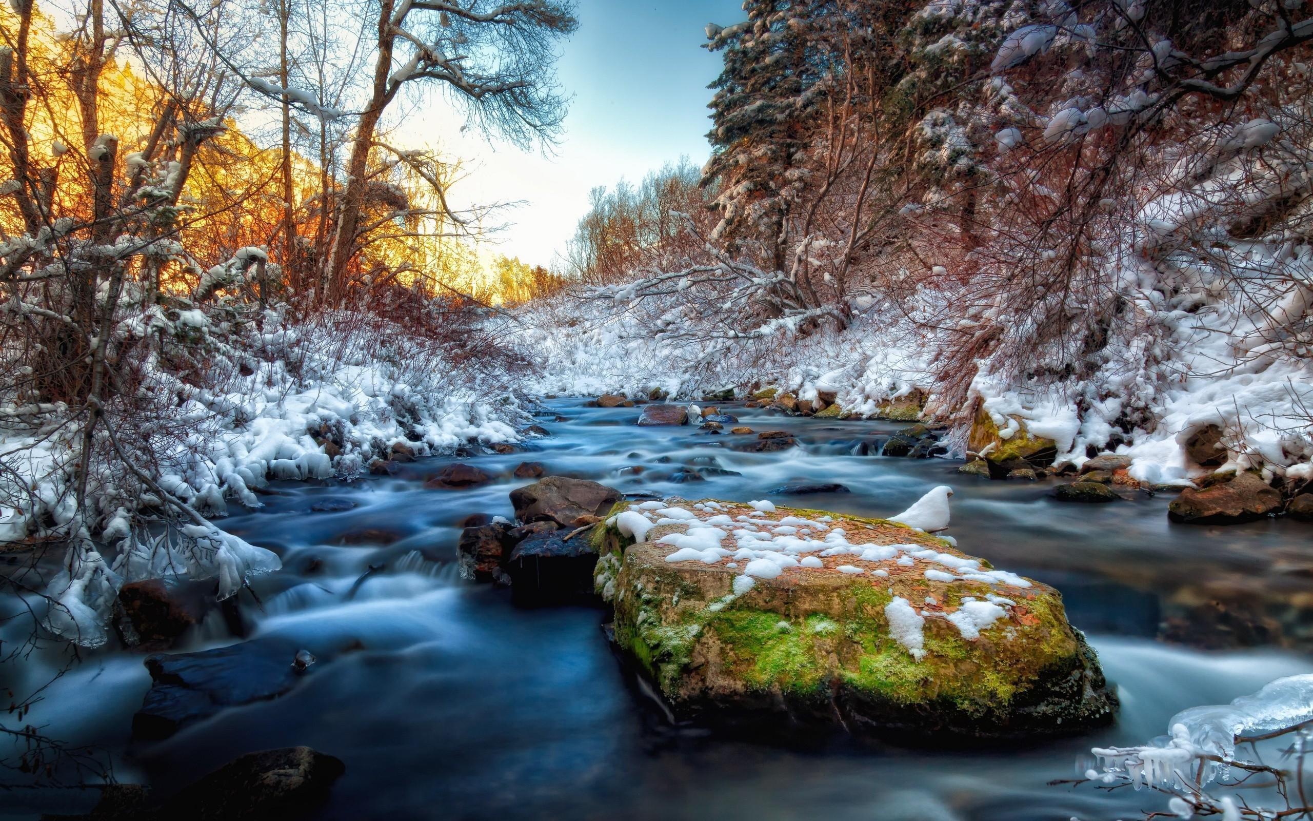 River Rocks Stones Snow Winter hdr wallpaper background 2560x1600