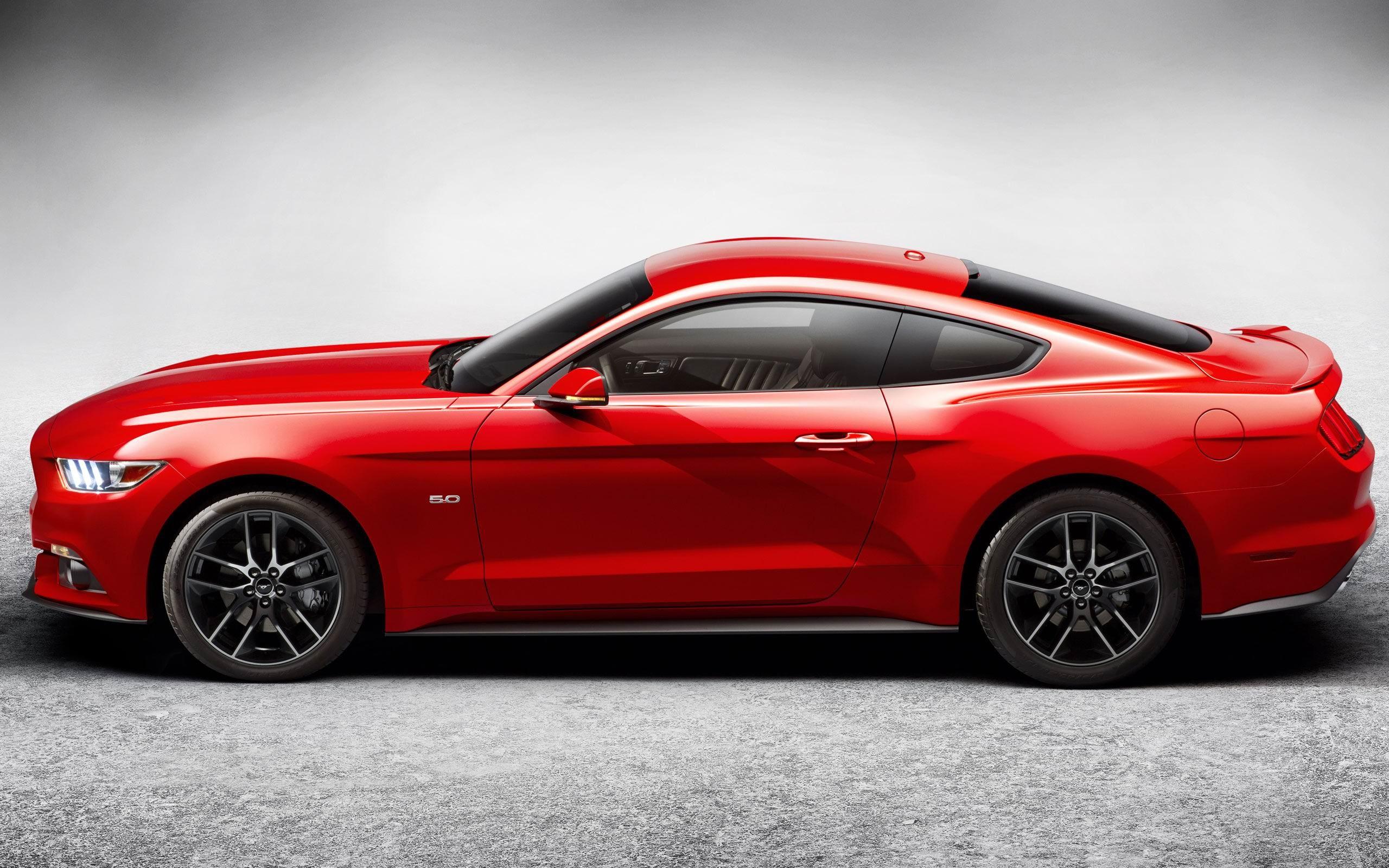 2015 Ford Mustang GT Car HD Wallpaper 12 2560x1600 2560x1600