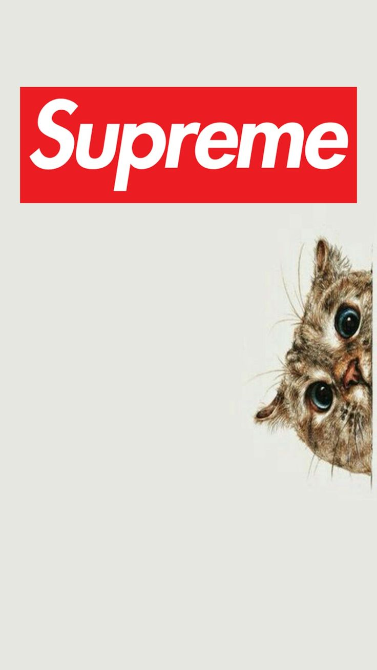 Supreme Wallpaper Iphone 113 images in Collection Page 2 736x1306