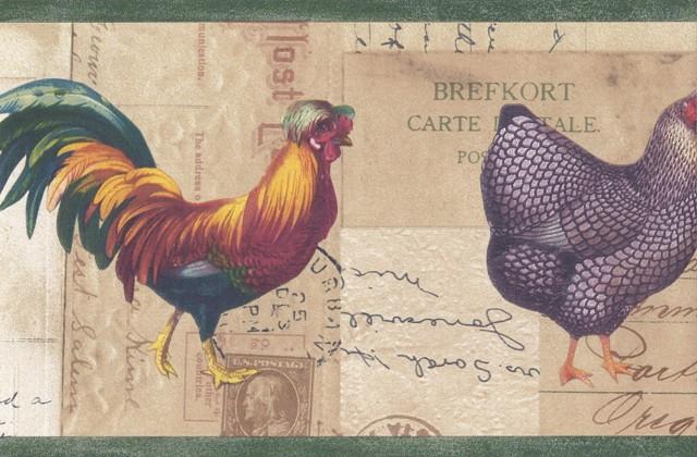Green Beige Rooster Chicken Wallpaper Border   Novelty 640x420