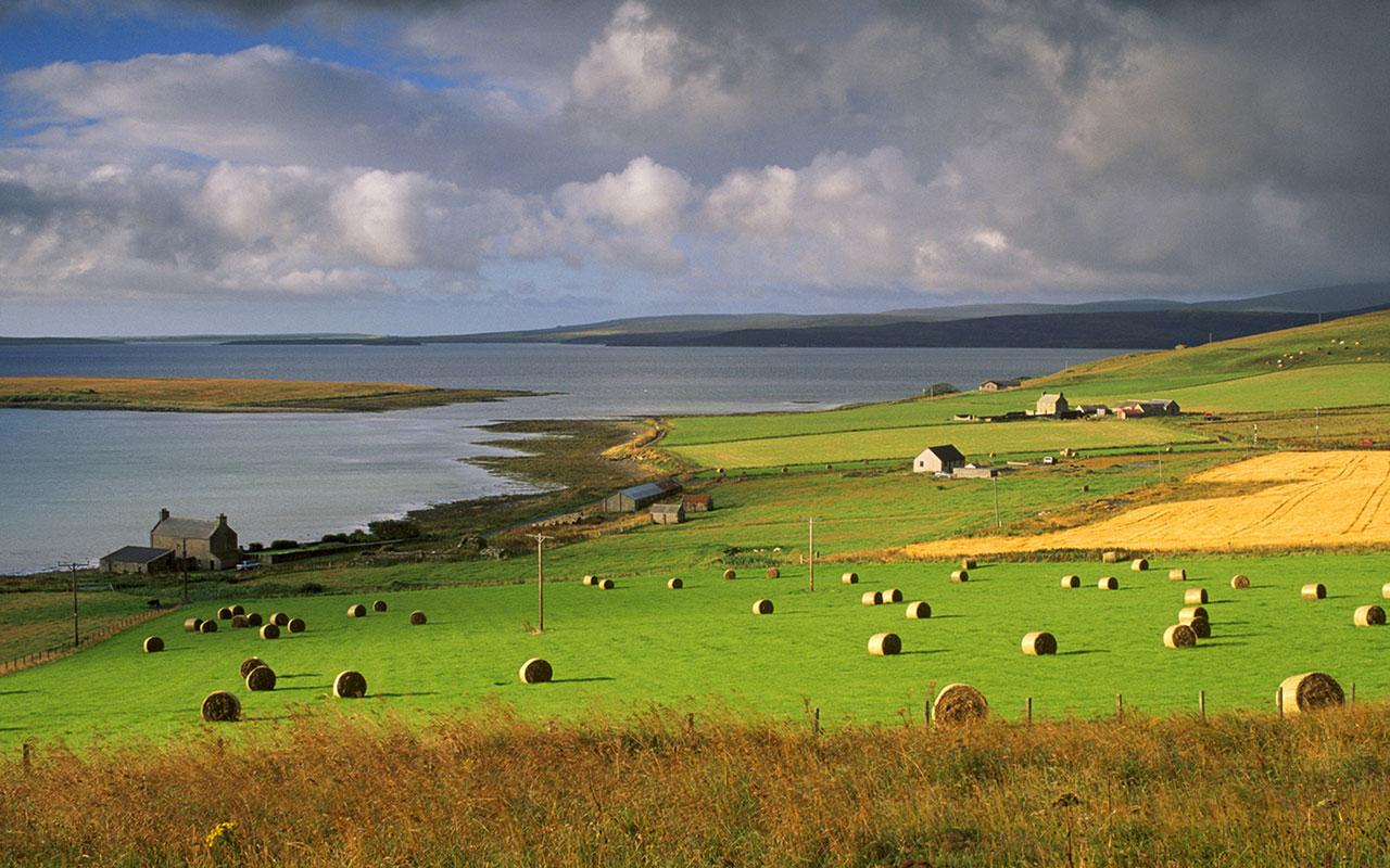 Seaside Farms Landscape Wallpapers   download wallpapers 1280x800