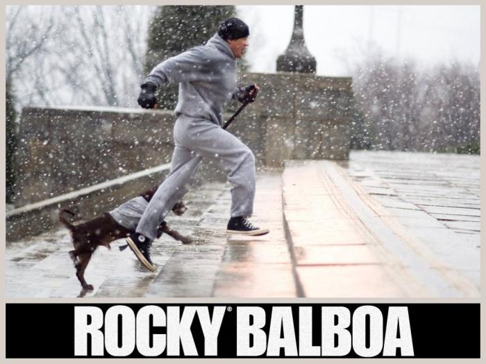 Rocky Balboa Wallpaper   Download 700x525