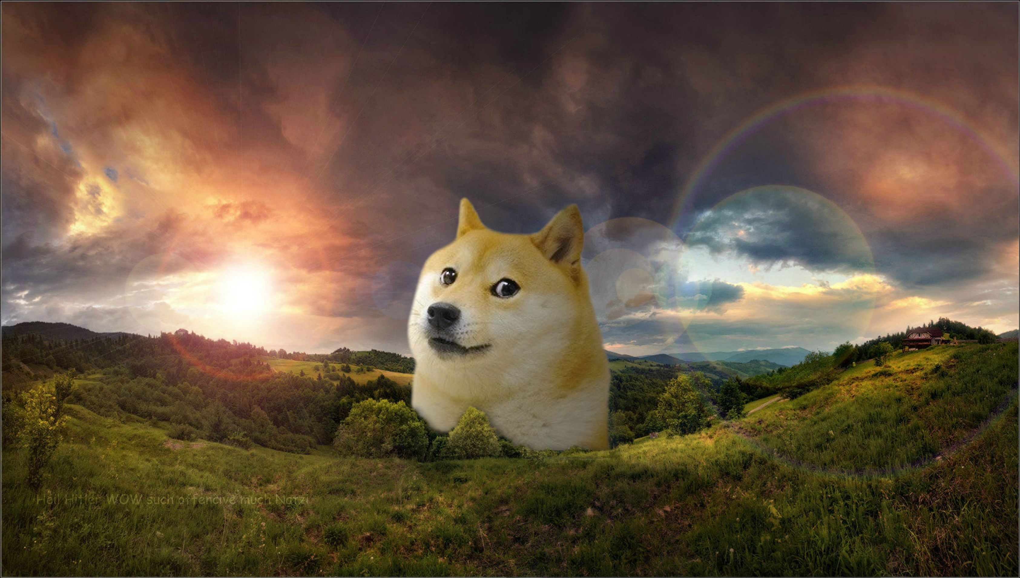 friend of mine asked me to make him a doge wallpaper Little does he 3370x1909