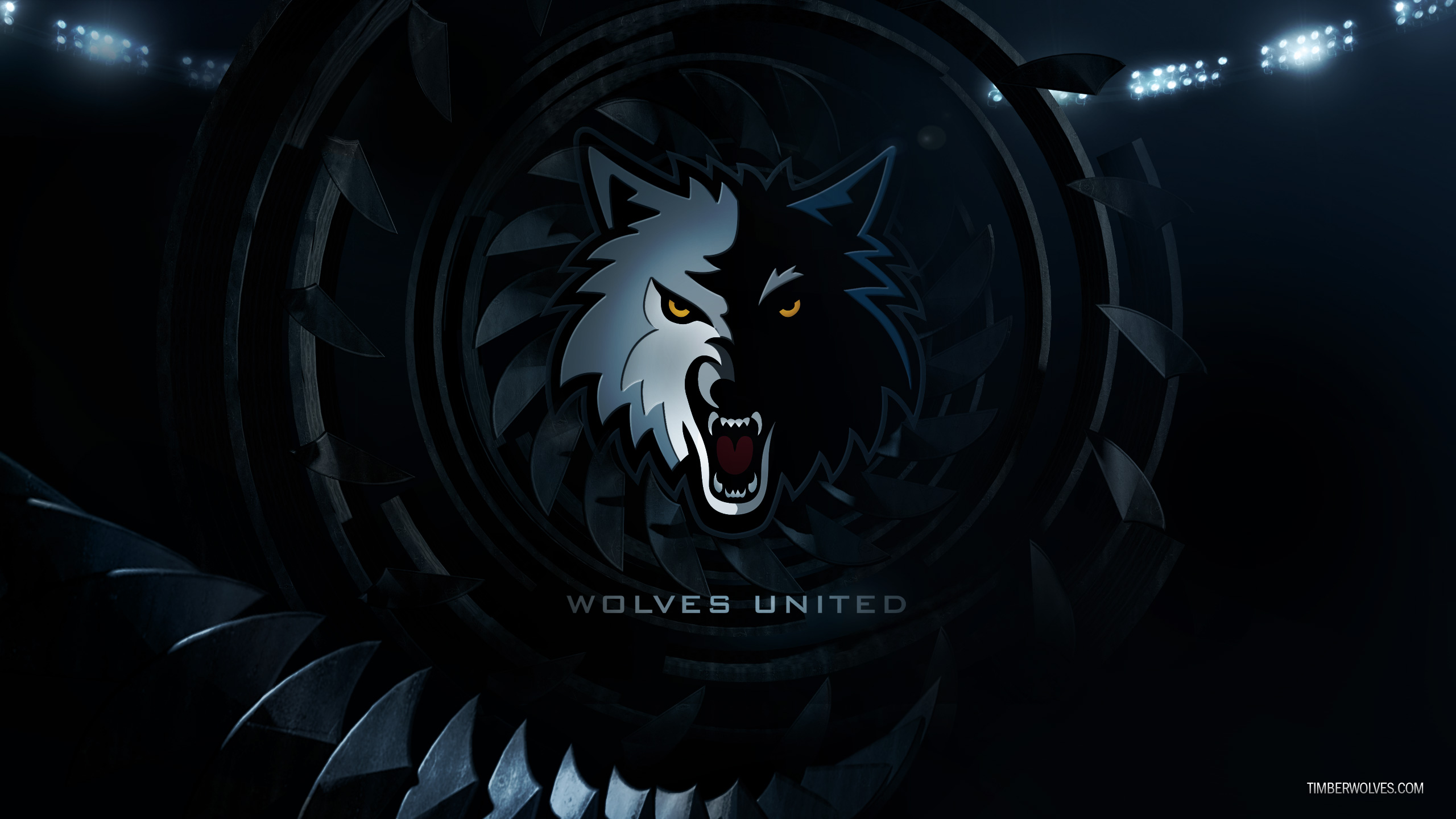 Timberwolves Wallpaper Minnesota Timberwolves 2560x1440