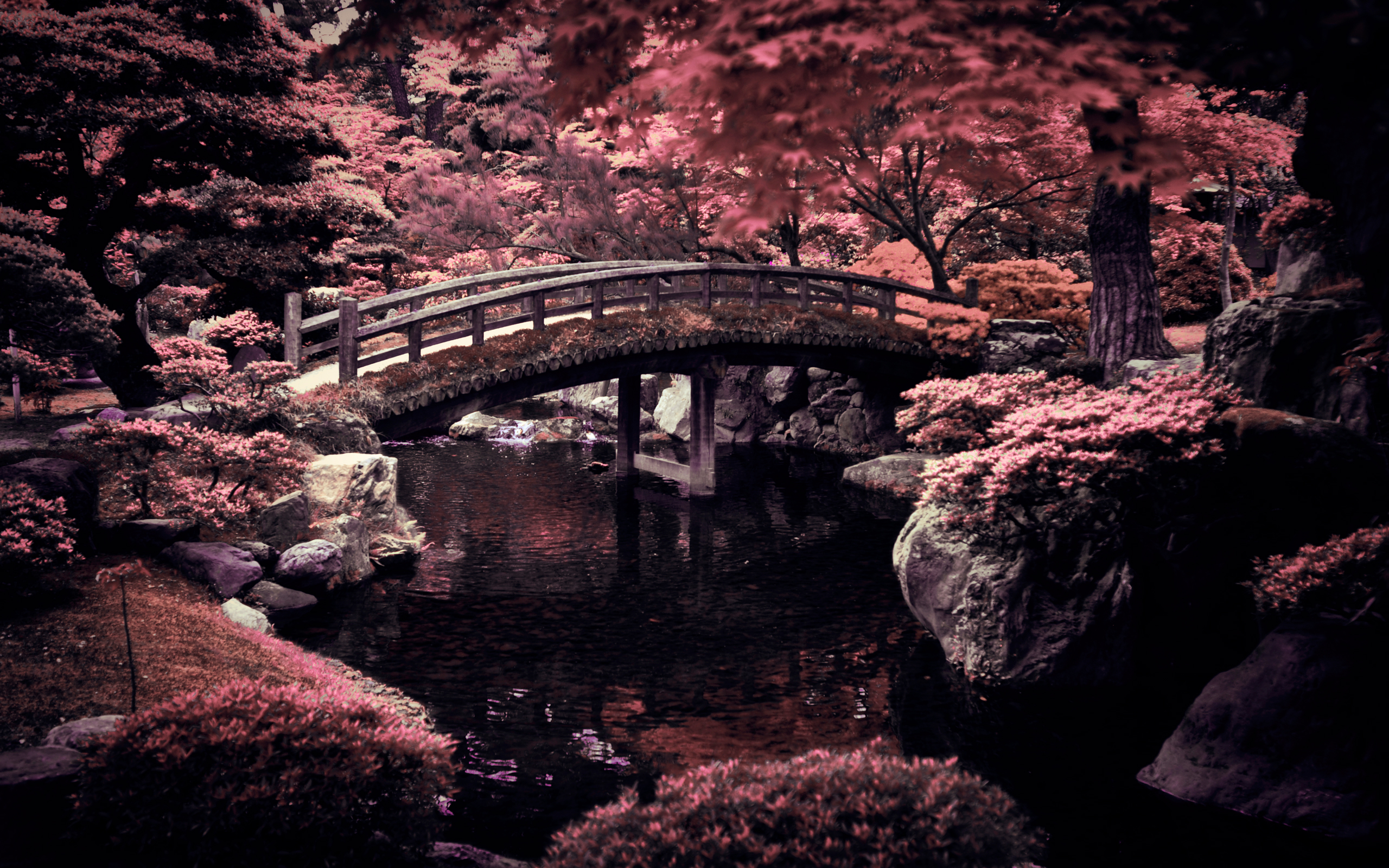 Imperial Garden Japan Wallpaper Desktop Wallpapers 2560x1600