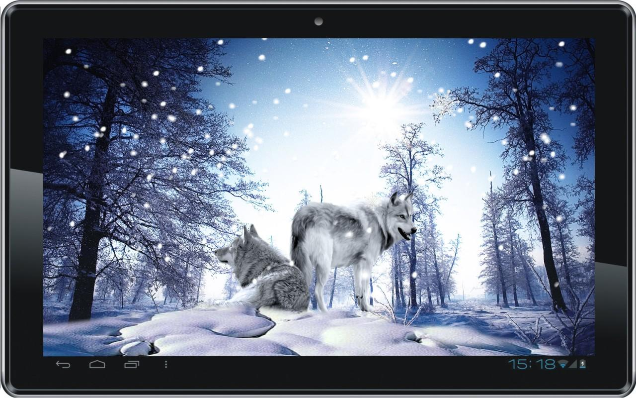 Snow Wolf HD live wallpaper   Android Apps on Google Play 1280x800