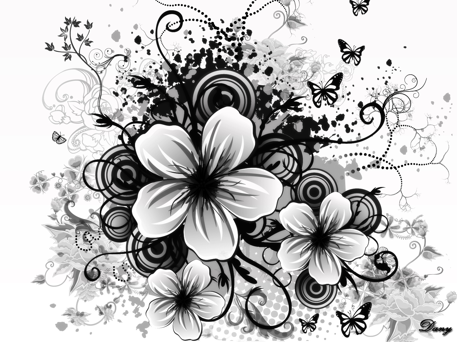 Black and white flowers wallpapers HD Wallpapers Backgrounds 1600x1200