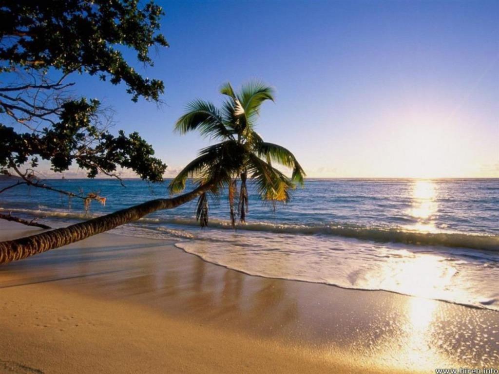 sunset beach single personals Nur 100 m von der küste und ihren herrlichen stränen entfernt bietet ihnen das sunset beach  immer erfüllt und man merkte das bemühen des personals.
