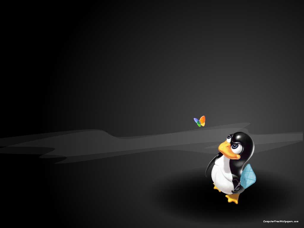 Linux de olho no Windows Wallpaper 1024x768