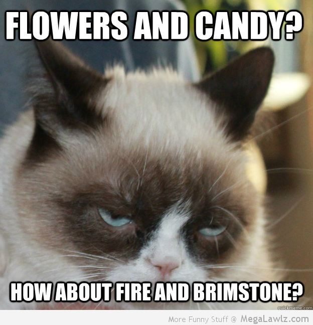grumpy 20cat memes best collection of funny grumpy 20cat pictures 624x648