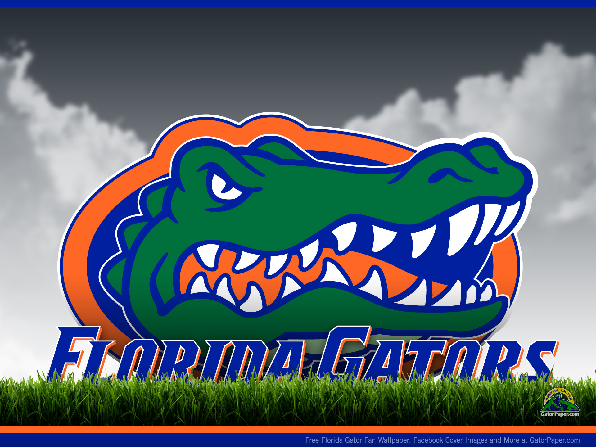 Related Pictures florida gators wallpaper 1920x1440