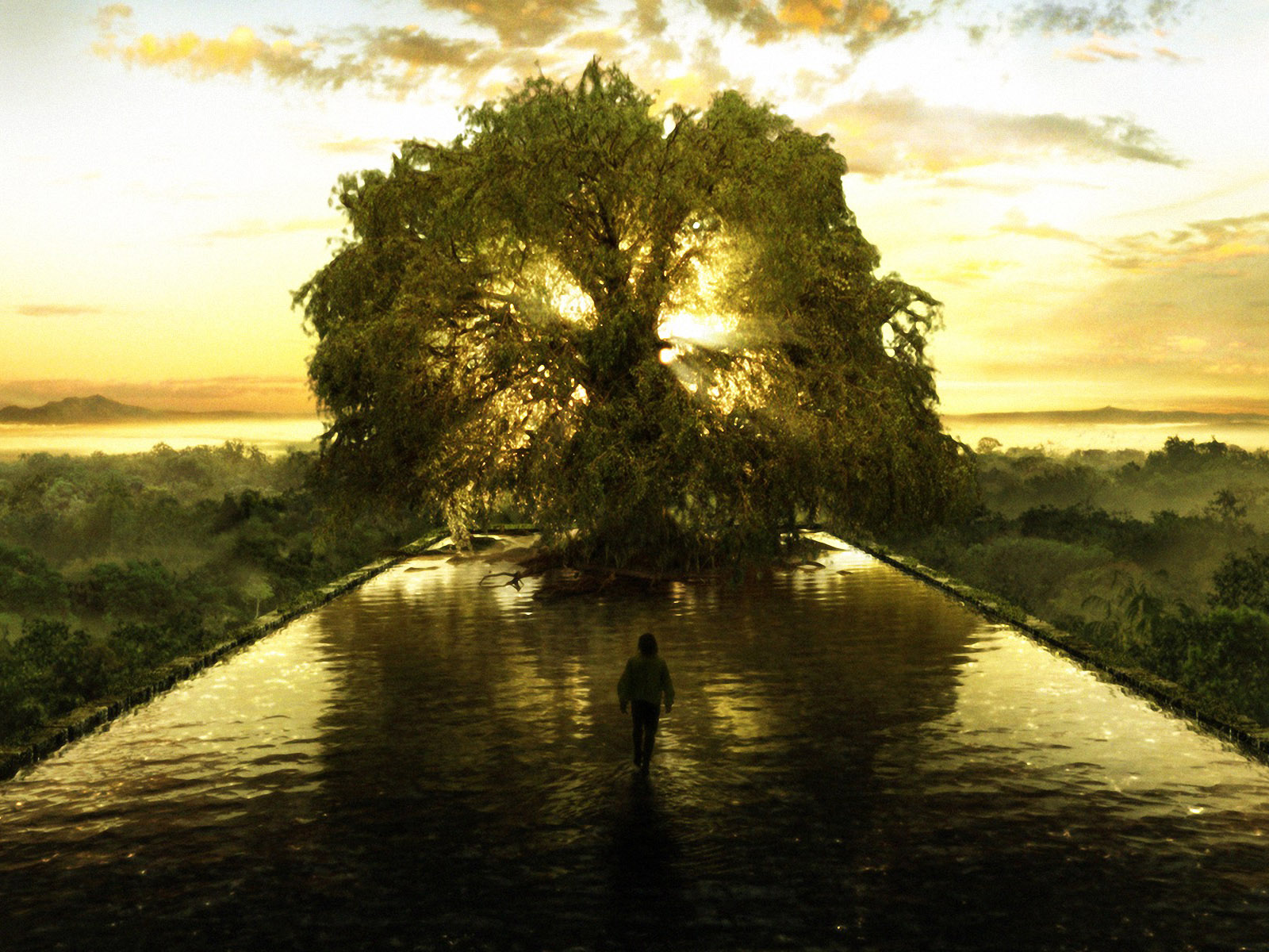 The Tree of Life HD 1600x1200 Wallpapers 1600x1200 Wallpapers 1600x1200