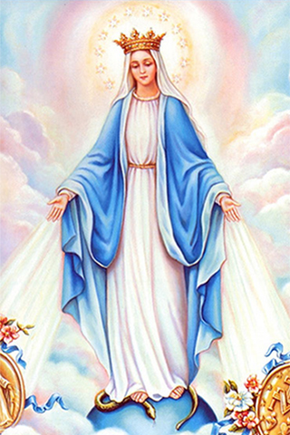 Wallpaper of Virgin Mary for iPhone 320x480