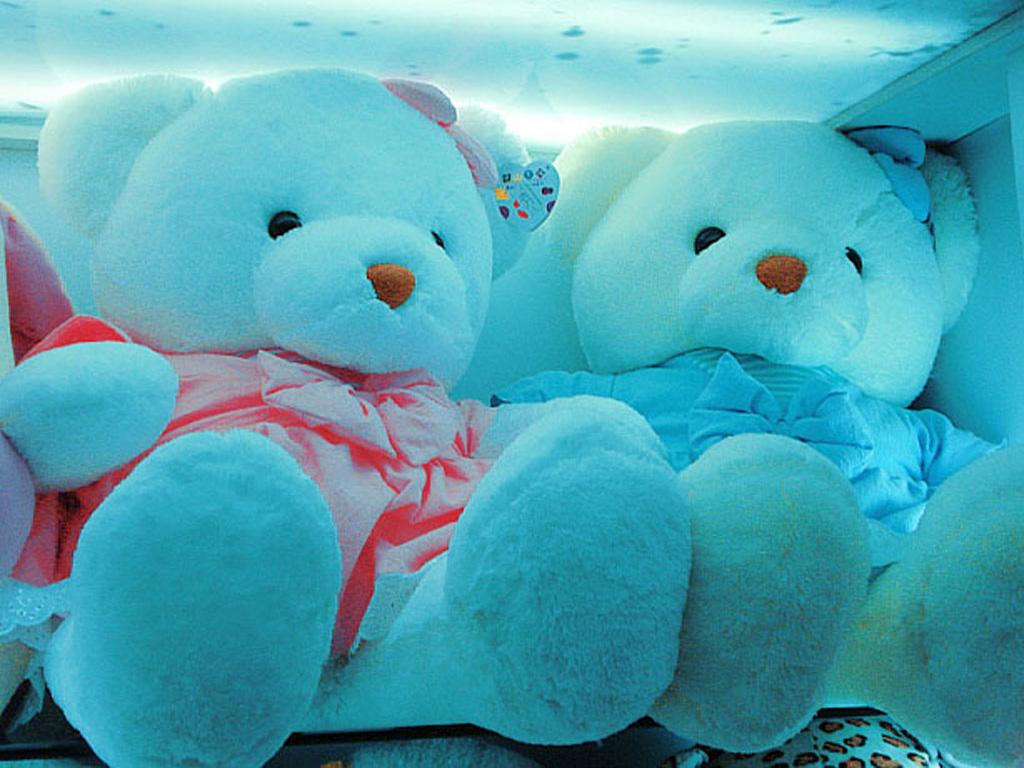 Teddy bear couple tumblr