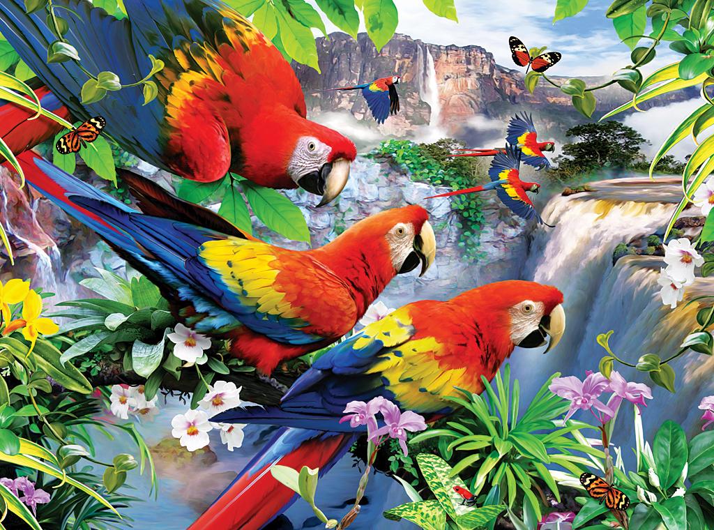 Wallpaper Wallpaper Tropical Bird HD Walls Find Wallpapers 1024x760