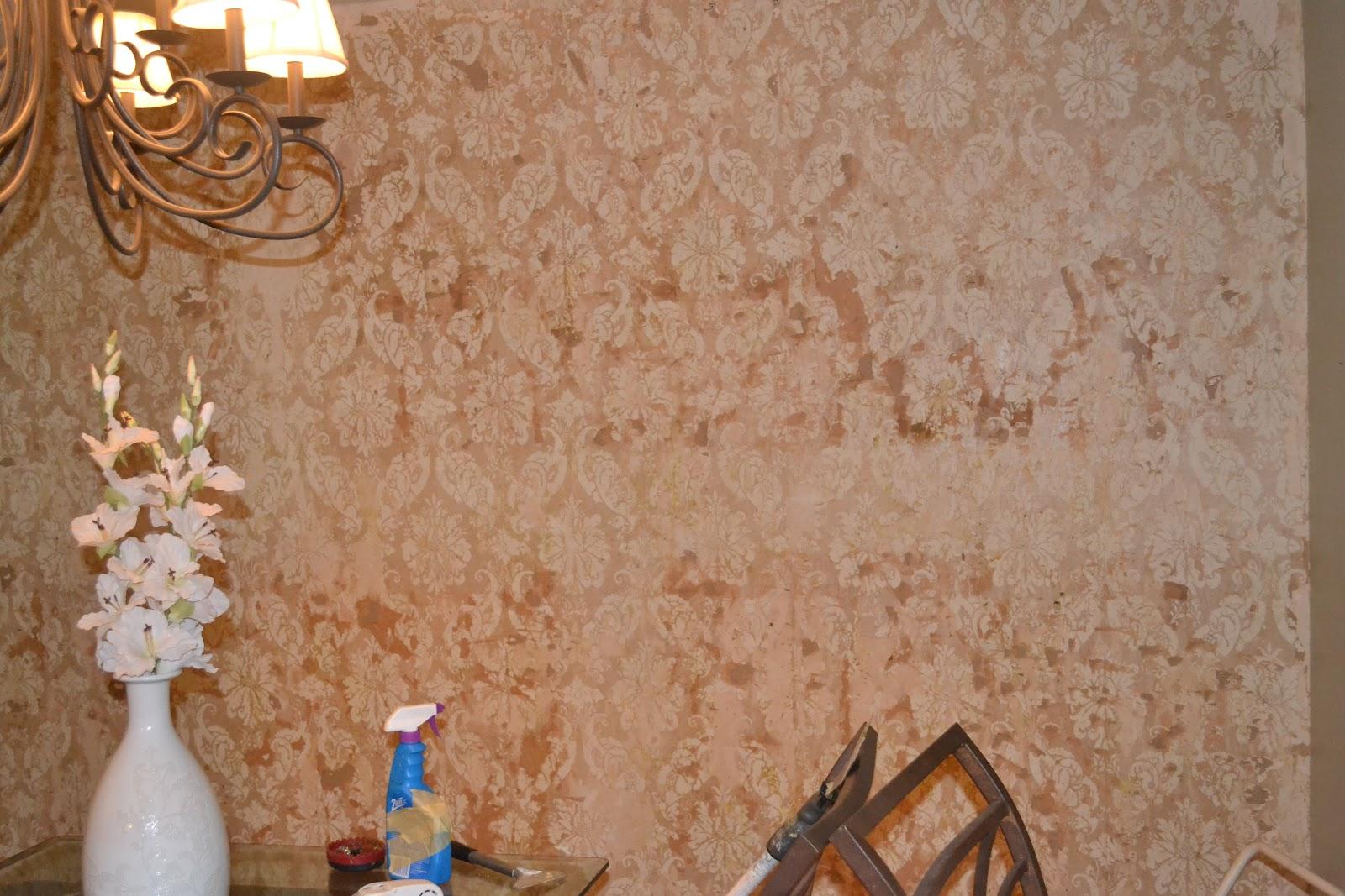 Wallpaper Removal Vinegar Wallpaper Full HD 1600x1067