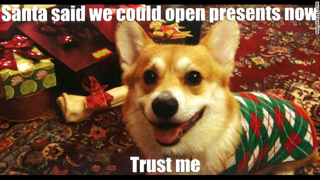 Christmas Corgi Wallpaper - WallpaperSafari | 640 x 360 jpeg 79kB