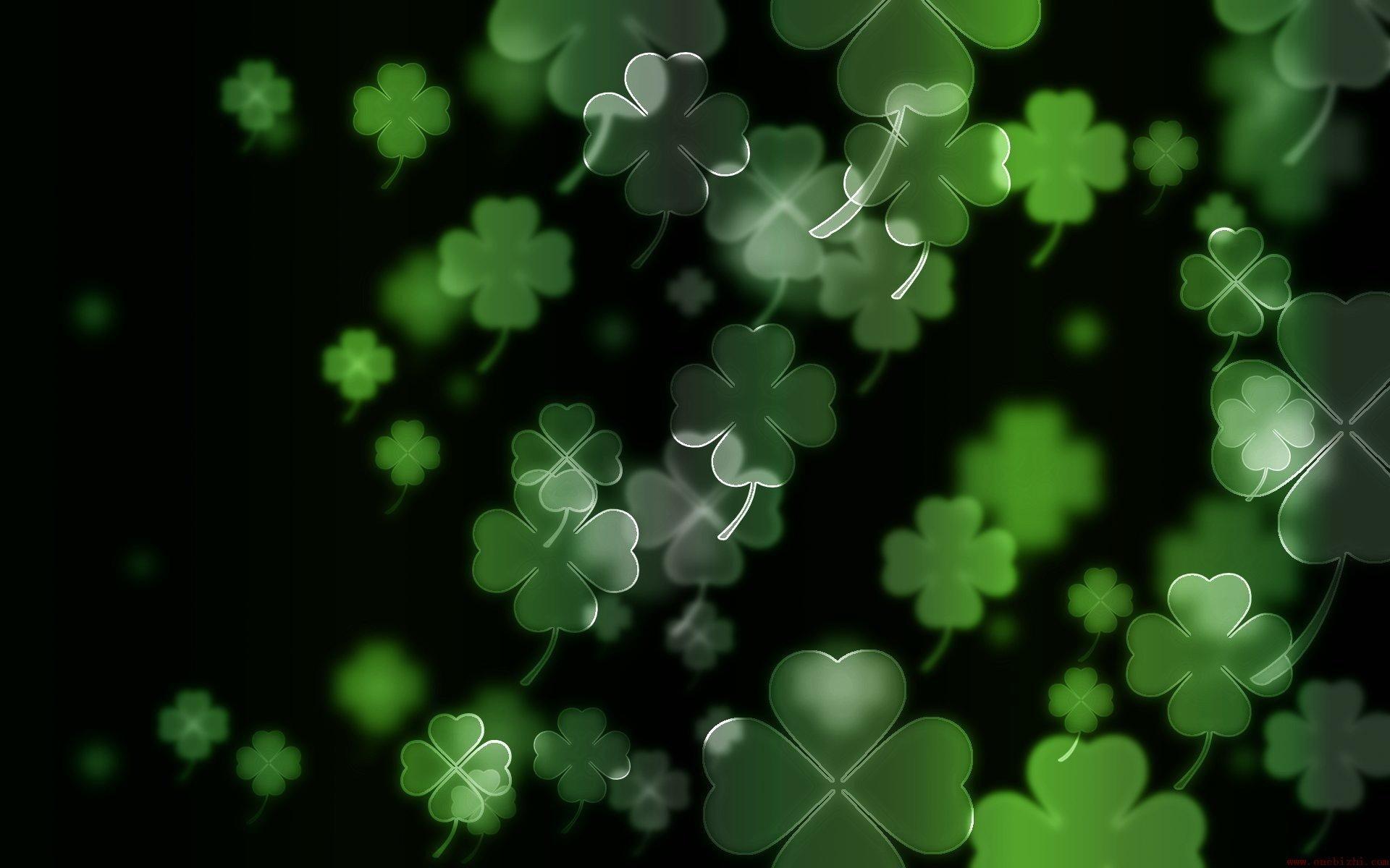 luck irish four leaf clover Clovers wallpaper background 1920x1200
