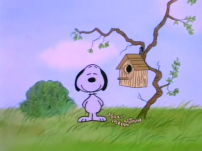 snoopy spring wallpaper   weddingdressincom 700x523