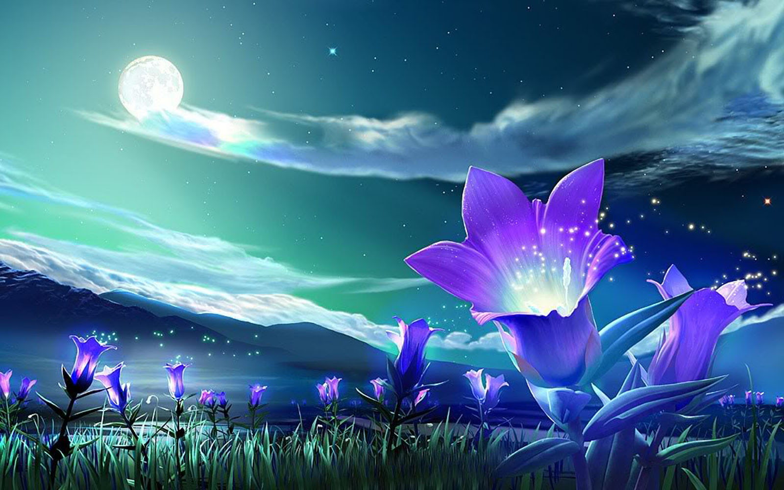 Tag Windows 7 Flowers Wallpapers Backgrounds PhotosImages and 1600x1000