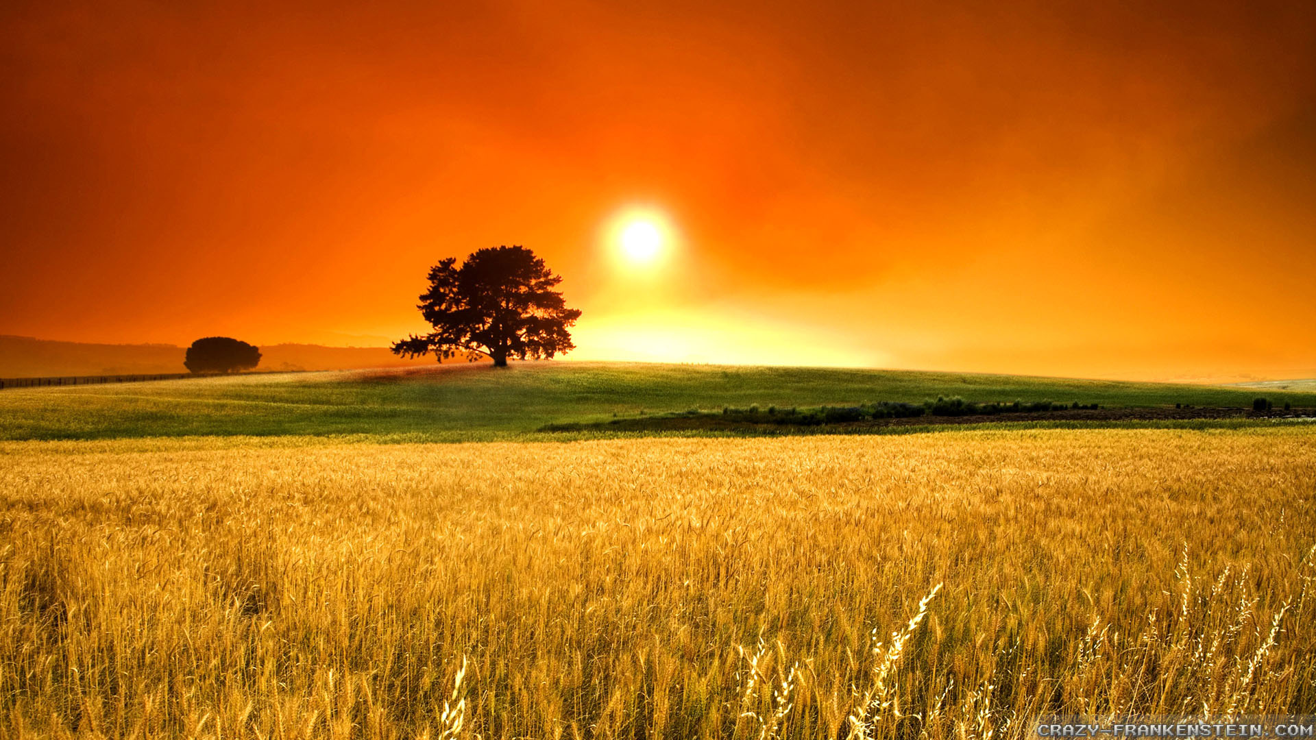 Wide HDQ Pretty Sunny Day Wallpapers 38 BSCB 1920x1080