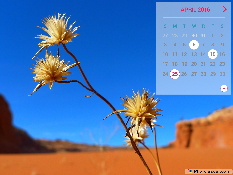 April 2016 Calendar In The Background Of Desert Calendars for April 3000x2250