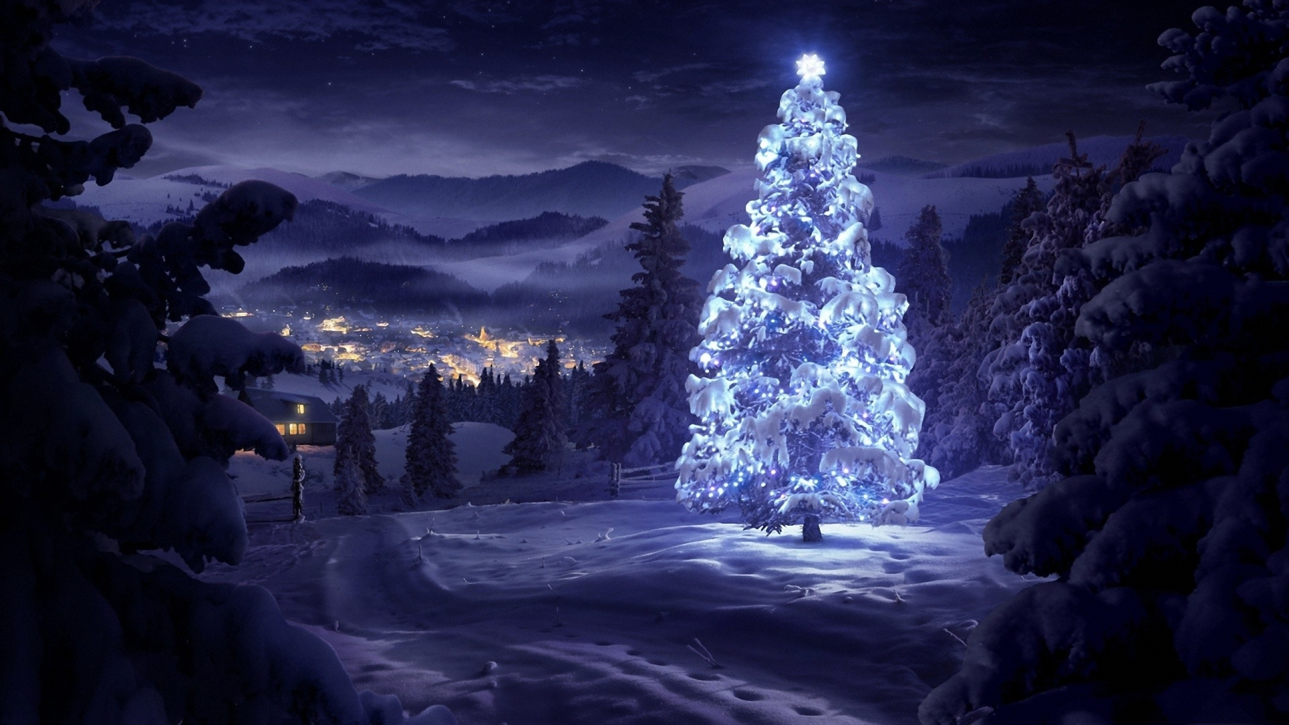 Christmas tree in the snow wallpaper 2560x1440
