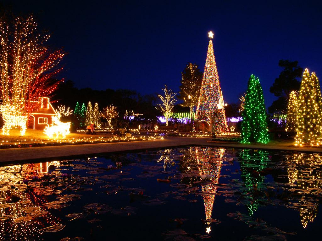 Download Bright Christmas tree wallpaper backgrounds desktop 1024x768
