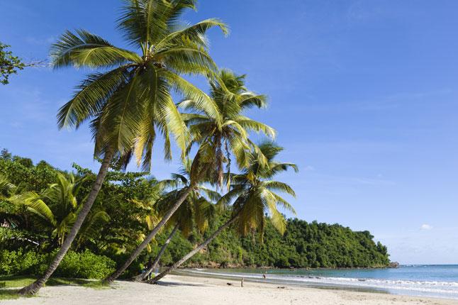 Tourism Grenada Island 646x430