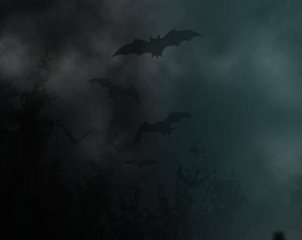 Horror Movie Background - WallpaperSafari