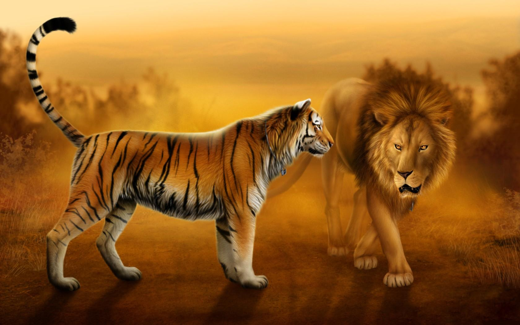 Pictures of lions tigers