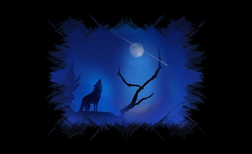 Photo Shooting Star Wallpaper Wolf Wallpapers album Cherylee21 500x305
