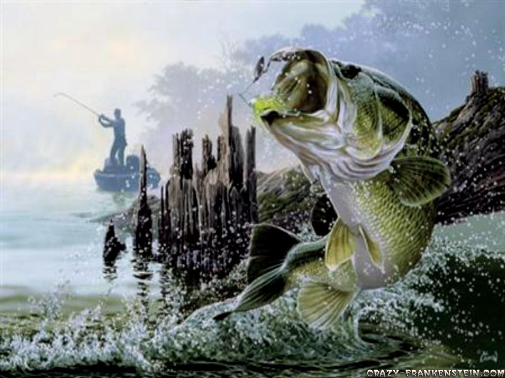 Fishing Cartoon Wallpaper 1024x768