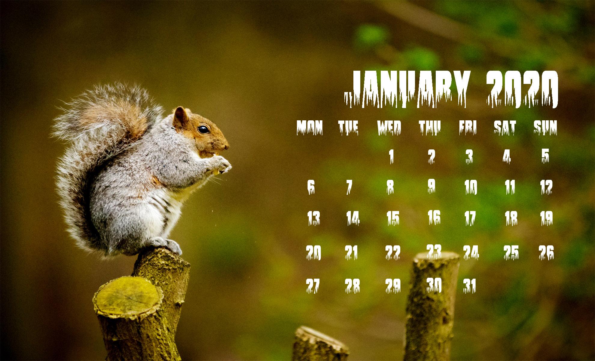 15 January 2020 Calendar  Printable January 2020 Calendar 1980x1200
