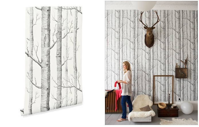 Free Download Woods Wallpaper Cole And Son Cole And Son