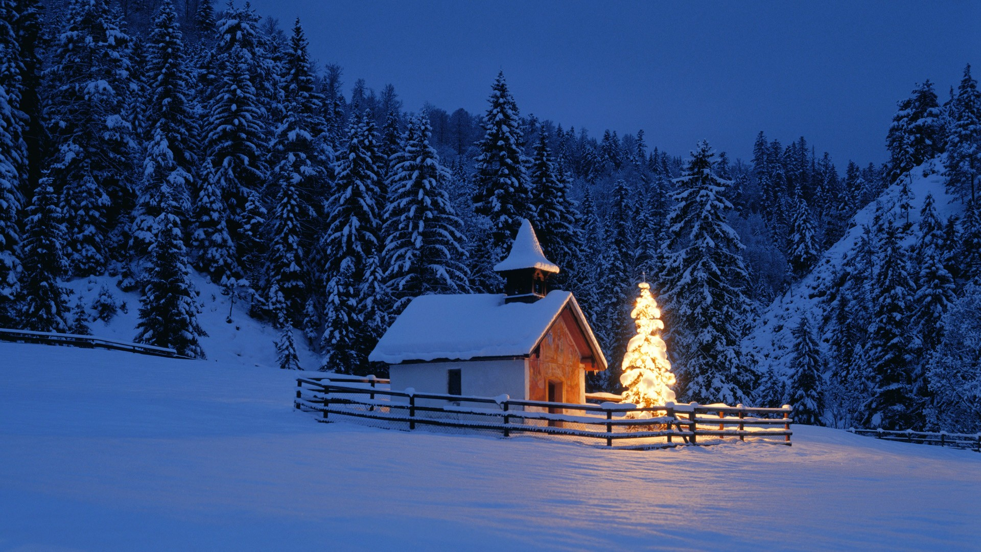 Winter Wallpapers Backgrounds HD download 1920x1080
