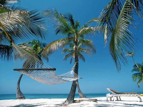 Beachhammock Beach Hammock Palm Trees Belize 1600x1200 Wallpaper