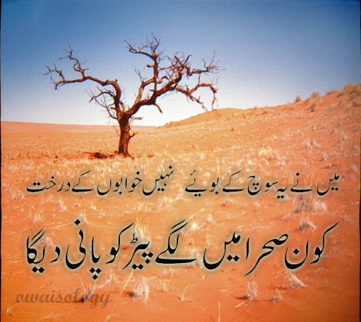 Daer Tube Urdu sad poetry wallpapers 527x469