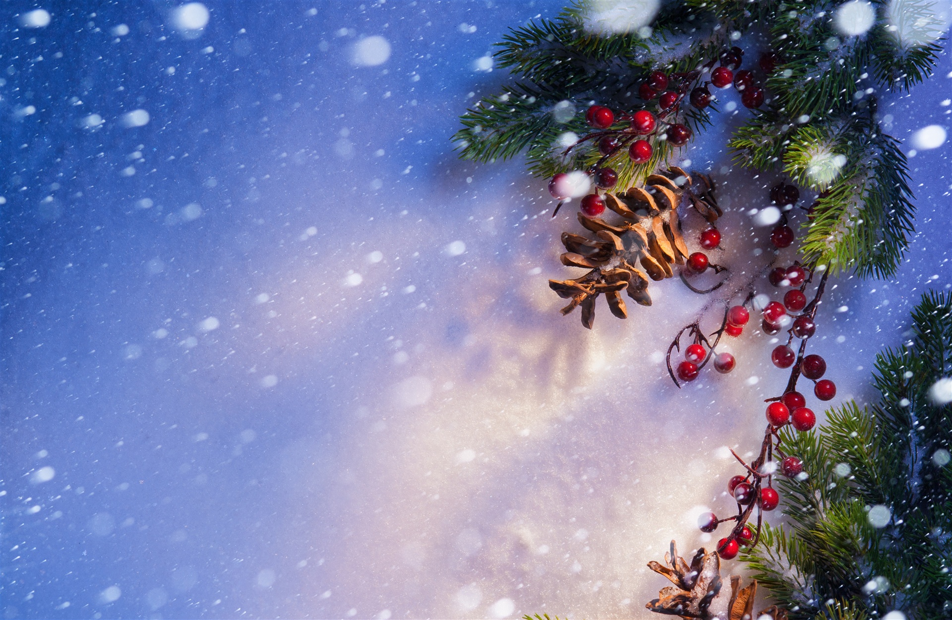 4K wallpaper   New year   berries snow cones   7656x4986 1920x1250